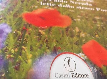 Casini Editore, per Touch Srl – Morris Casini & Partners